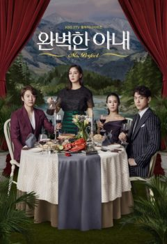 Ms. Perfect Vostfr – Perfect Wife 20/20