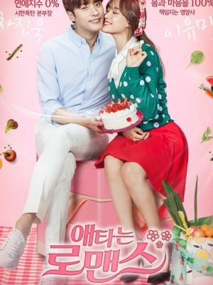 My Secret Romance Vostfr Téléchargement/Streaming
